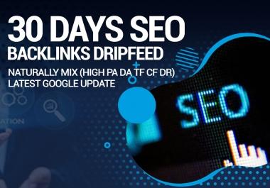 Do Rank Your Website on Google Top, SEO Backlinks 30 Days Dripfeed Manual Work