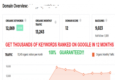 Monthly SEO Package Rank 10,000 Keywords On Google