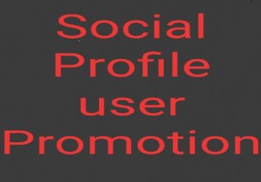 Get High quality profile user promotion safe service