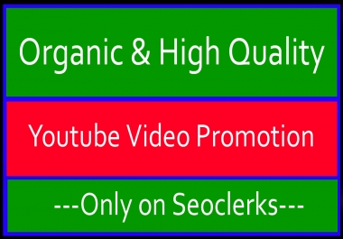 Organic and High Quality YouTube Video Promotion