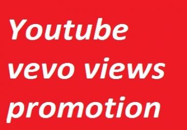 Youtube Vevo video promotion non-drop guarantee