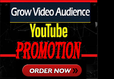 High Quality Youtube Video Promotion Marketing Exclusive Service