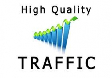 Real And Unique High Quality Website Traffic