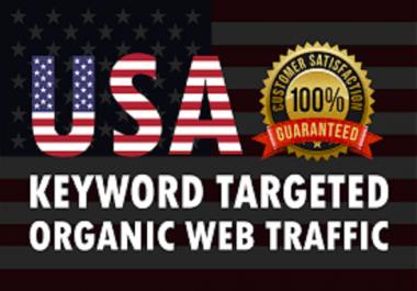 10000 USA Keyword Targeted Organic Web Traffic