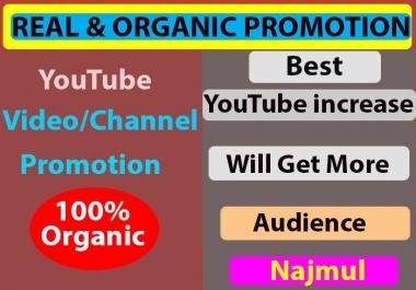 Youtube Video Promotion High-Quality via social media marketing