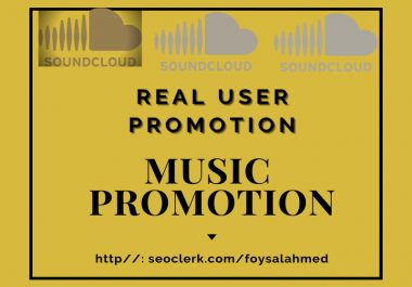 Custom Order For Only Music Promotion Service