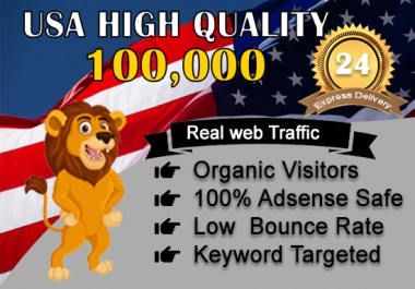 send 100,000 adsense safe USA target website,traffic,daily visitors