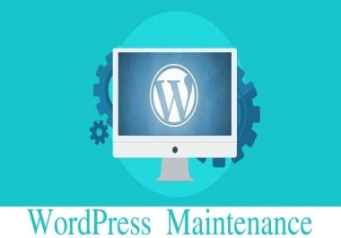 WordPress Monthly Checkup/ Maintenance - Installing,Theme,Plugin,HomePage,Form,Post,SEO,WooCommerce