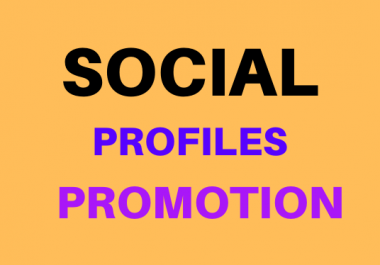Get High Quality Social Media Profile Promotion With Non Drop Instant Delivery