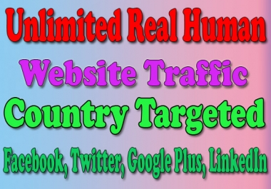 Website Traffic With Real Human Visitors, SEO For Website Ranking