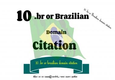 10 .br or Brazilian domain citation