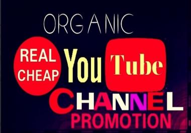 Provide HQ, HR, utube fans Promotion Instantly