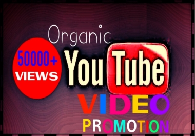Add hq hr non drop ytube video promotion professionally