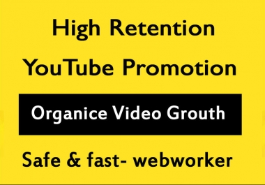 High Retention YouTube Video Promotion and Marketing in 12 Hours