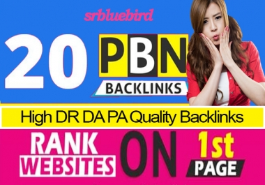 Do 20 PBN Backlinks High DA PA DR 50+ PR Quality Homepage for first page on google