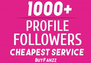 Add Fast 1000+ Profile Followers