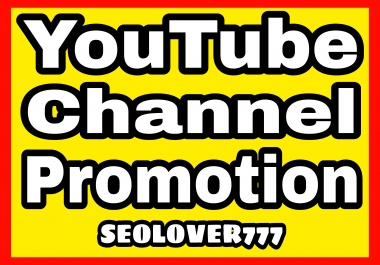 Provide You Organic YouTube Promotion fast