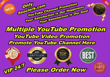 You Will Get Original Natural YouTube Promotion High Quality