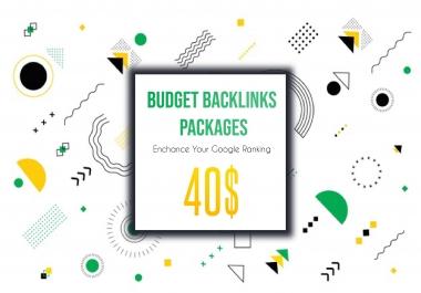 SEO BUDGET Backlinks Link Building Package