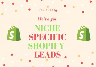 300k+ Massive Store all niches leads USA