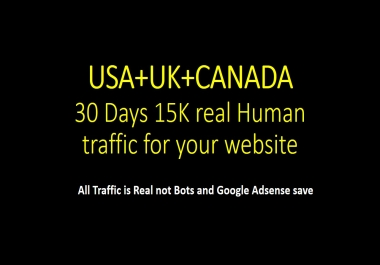 USA+UK+CANADA Targeted traffic for 30 days to your Website or Blog