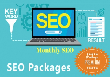 I will provide all manual SEO link building package
