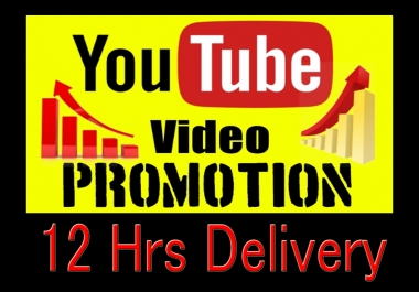 Life time guaranteed Youtube video promotion,social Media Ranking Marketing VIa Google adwords
