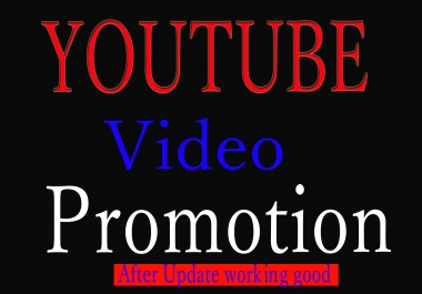I will do Natural YouTube Video Promotion via organic seo marketing