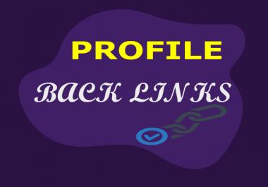 Create 1000 High Authority Profile Back links