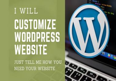 Do WordPress Customization Professionally