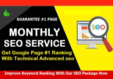 I will provide monthly SEO service,for website traffic and google ranking