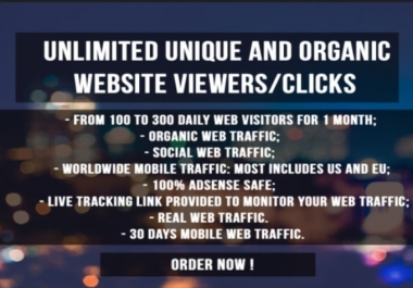 Unlimited 30.000 organic website trackable traffic to any website