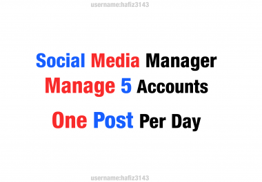 I will be your social media manager,Management of 5 social media Platform