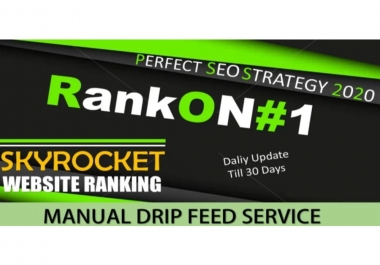 I will create 30 day drip feed daily update 10 backlinks