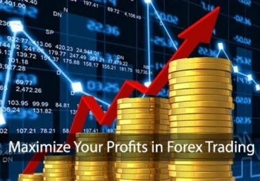I Will Generate Hot Fresh Forex Leads Crypto Leads Mobile Leads