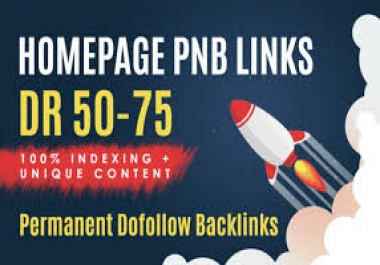 Provide 15 PBN DR 50 to 75 Plus Homepage Permanent Backlinks