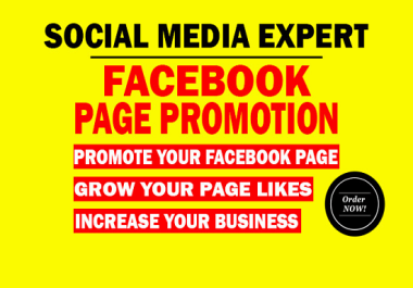 I will do organic advertising of your facebook page to get worldwide or targeted real peoples
