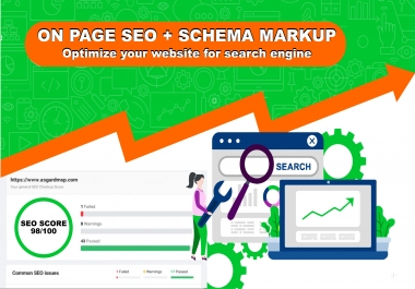 I will do on page seo and technical seo for wordpress