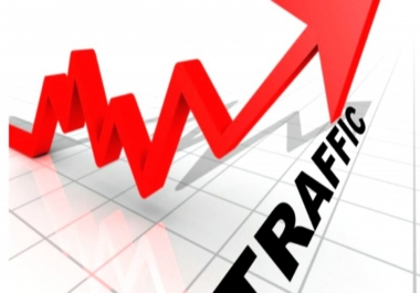 2000 Human USA Targeted traffic to your web or blog site. Get Adsense safe