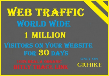 Drive one Million Traffic to your website for 30 days