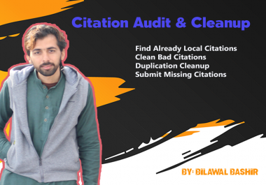 I will do citations audit and remove duplicate citations 150+