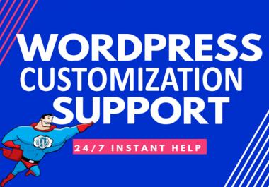 I will design wordpress website or wordpress customization