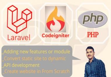 fix,develop a web application using php,laravel