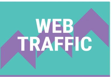 40,000 Real Human WORLDWIDE Traffic to your site