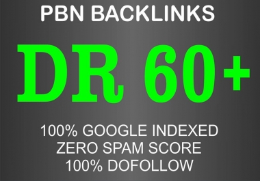 I will do 10 high DR dofollow pbn seo homepage backlinks