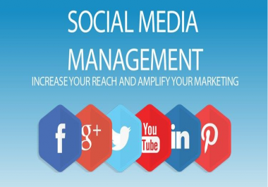 Be Your Social Media Manager for any social networking websites