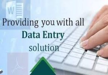 I will do all your data entry task withing the time you need