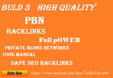 Build 3 homepage PBN Do Follow backlinks DR 50+ DA20+