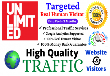 Unlimited TARGETED Worldwide Real Human Website Traffic Visitor For 30 Days