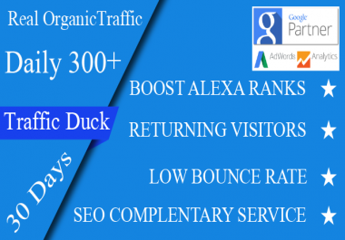 Real organic traffic daily 300+ visitors to your site for 30 days none stop